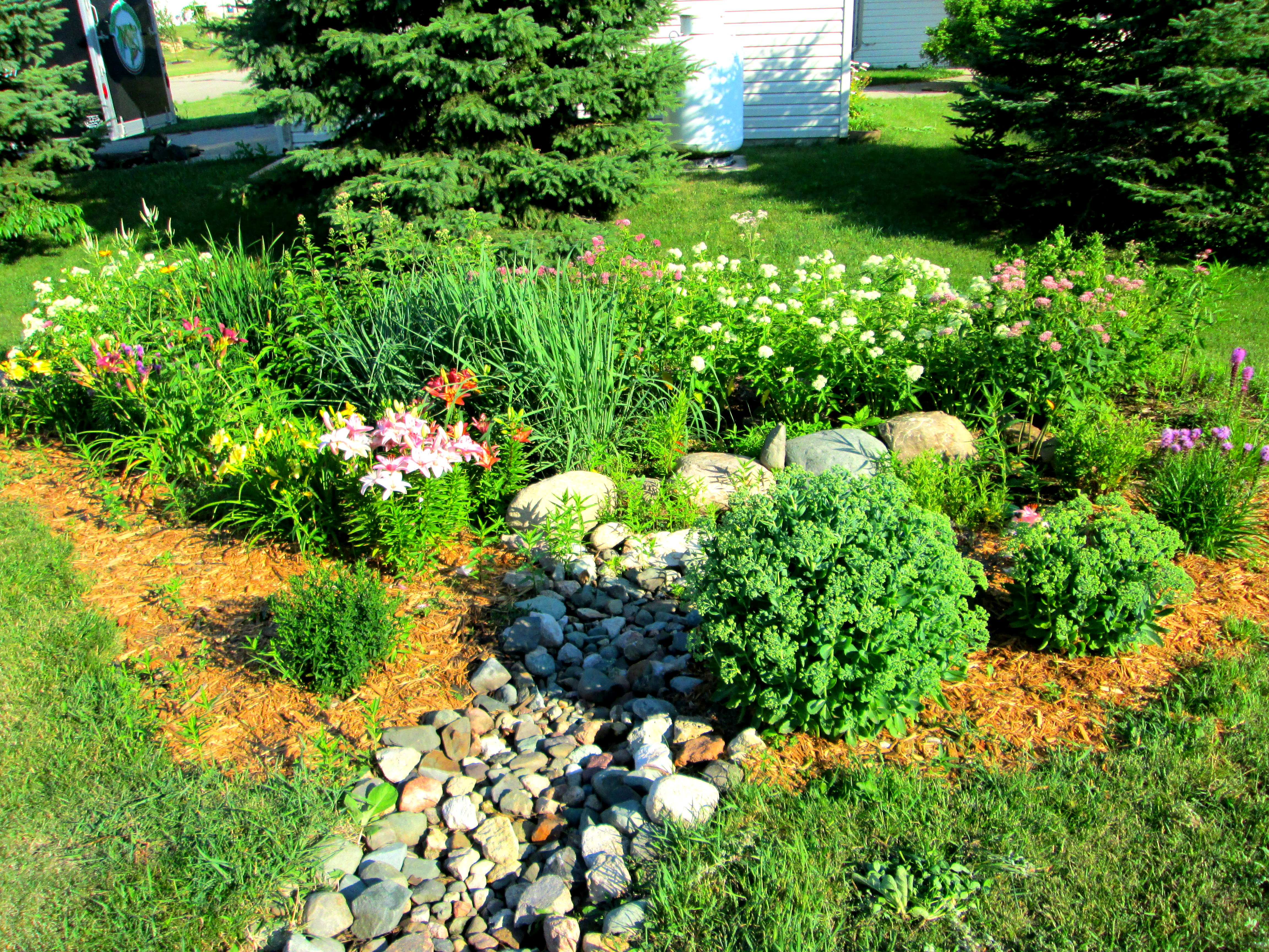 1000 Images About Raingardens On Pinterest