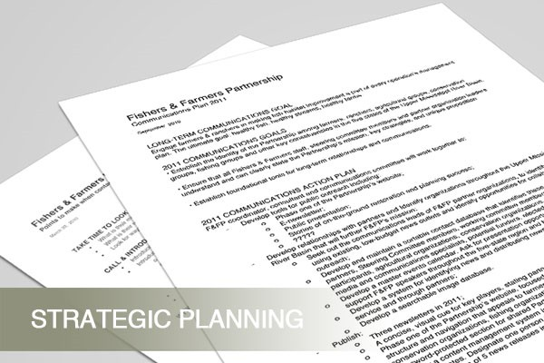 services_strategy_ffp_strategic_planning_2