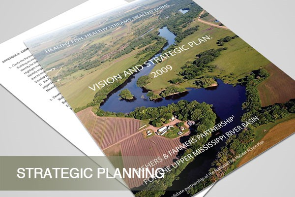 services_strategy_ffp_strategic_planning_3
